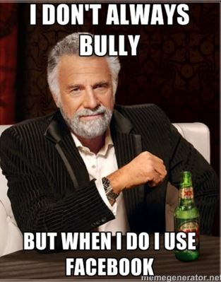 facebook bully