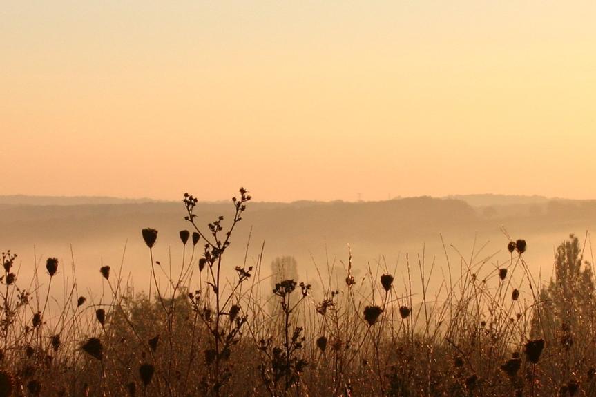 la_vesvre_de_saisy_morning_mist