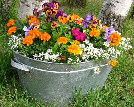 flower pot not going to work